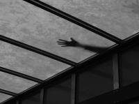 """Nová """"mléčná celosvětlíková střecha"""""""